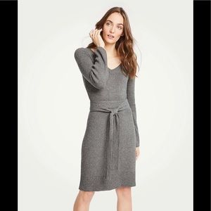 Ann Taylor Petite Tie waist V-neck sweater dress